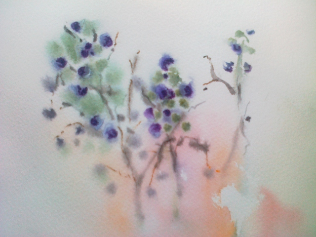 Blueberries, 2013