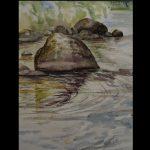 Rantakivi, akvarelli