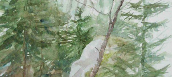 Kivi ja puita, akvarelli