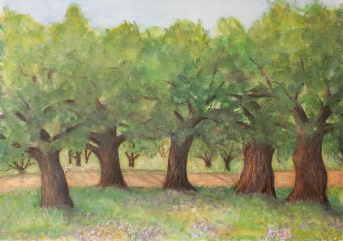 Öljypuulehto Kreeta, vesiväri 2010