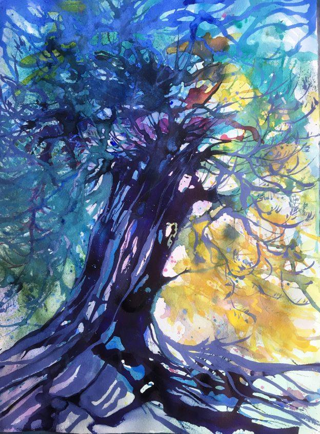 Kristiina Kostia, Vanha puu kertoo, akvarelli 76z56 cm, 2019